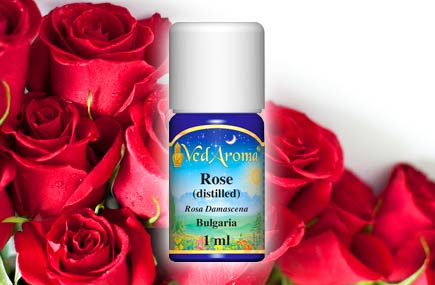 rose-essential-oil-w-roses